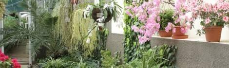 30 марта школьники нашего округа посетили Ботанический сад