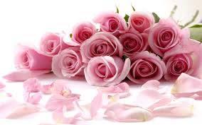 27 ноября – День матери