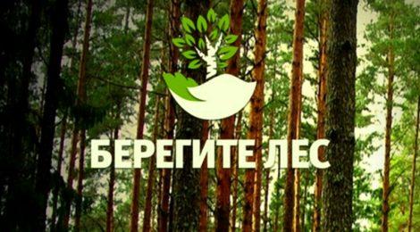 Кампания против поджогов сухой травы «Береги лес»