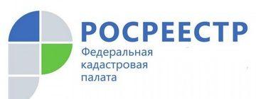 Кадастровая палата проконсультировала жителей Петербурга о порядке предоставления сведений из ЕГРН
