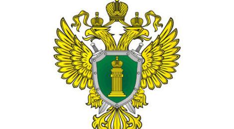 Санкт-Петербургская транспортная прокуратура разъясняет про ответственность за нарушения в области культивирования наркосодержащих растений